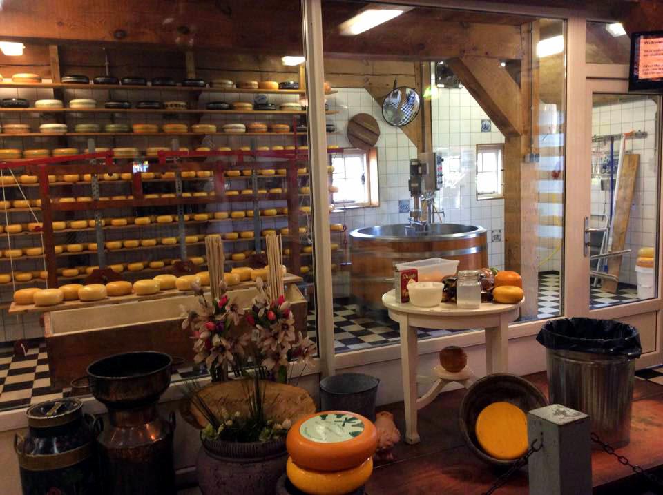 Látogatás egy sajtüzemben